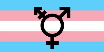 Transgender Pride, LGBTQ, Gender Fluid, Gender Queer, Demisexual, Tranny, Transexual, Transsexual
