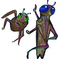 Cricket grasshopper Adventure Love Surfsoup Soup Waves Bigwaves Surfsouptv Television drawing love