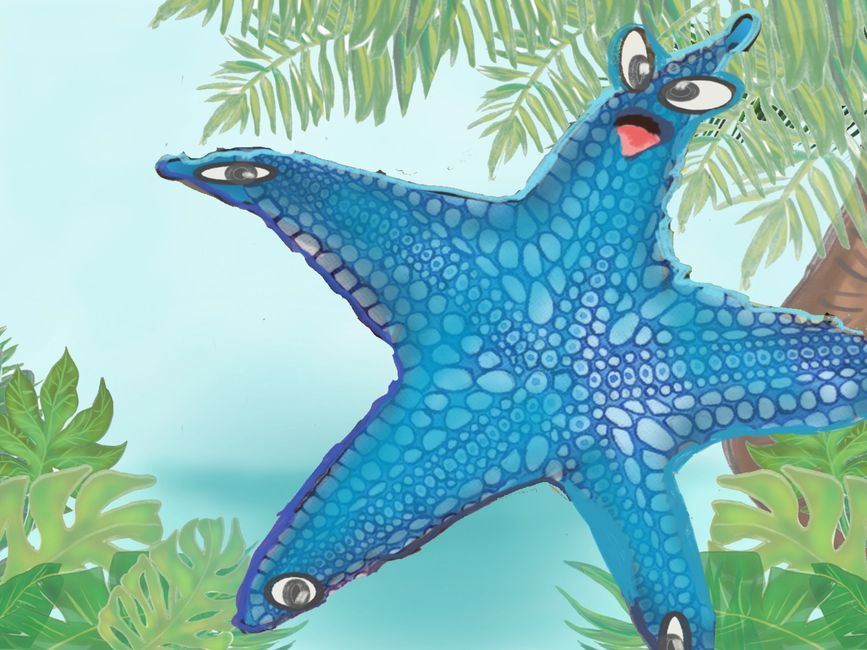 Blue the seastr starfish Seashore Boardwalk  Plastic pollution Pollution Environment Book Library