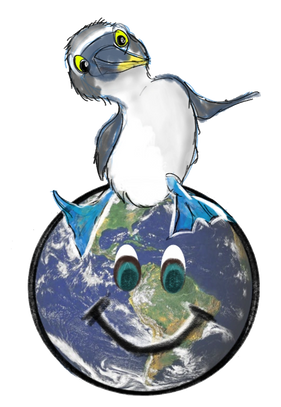 Ocean Plasticfree ocean pollution earth  Blue footed booby earth love oceanhugger beach surf surfing
