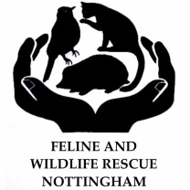 Feline and Wildlife Rescue Nottingham