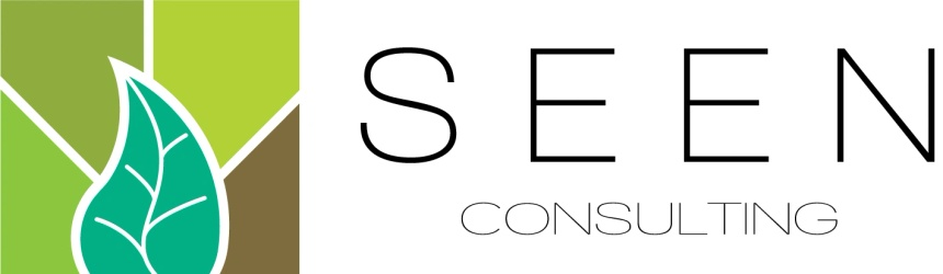 Seen Consulting