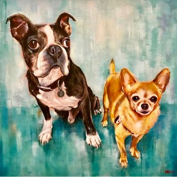 Boston Terrier Chihuhua Pet Buddies  Fur Babies