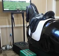 State of the art riding simulators will enhance the abilities of all riders beginner to advanced.