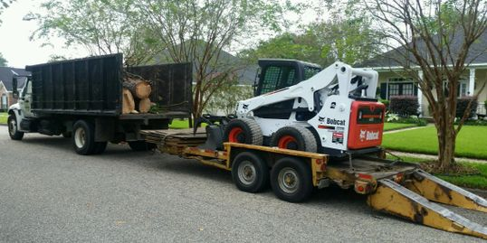 Bobcat front loader for loading cut tree sections into the dump trunk also shown for removal