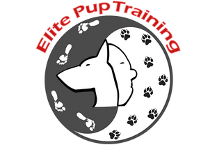 Elite Pup Training