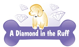 A Diamond in the Ruff Mobile Dog Grooming