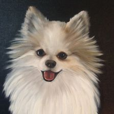 I paint pet portraits with oils on canvas. Your pet's photo will transform into a fine art painting!