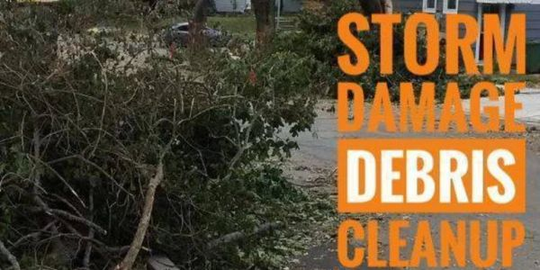 Storm Clean-up Debris Removal
