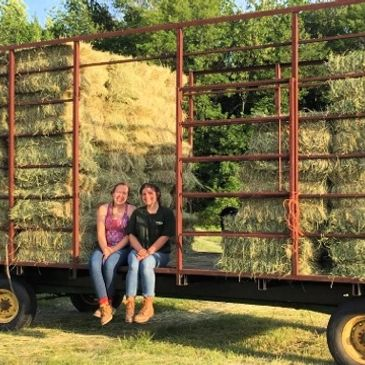 These girls helped hay our fields at the farm