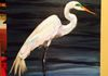 Great Egret, Acrylic on Canvas