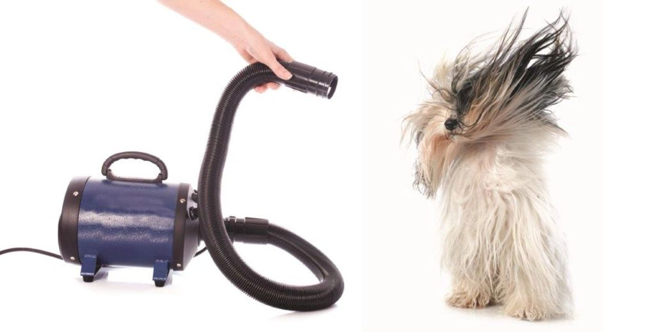 Self dog wash at your service pet supplies self dog wash solutioingenieria Gallery