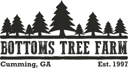 Bottoms Christmas Tree Farm