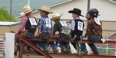 Rodeo Cowboys, Youth, Professional Rodeo Announcer
