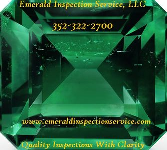 Emerald Inspection Service; Tampa Home Inspector; Lakeland Home Inspector; Dade City Home Inspector