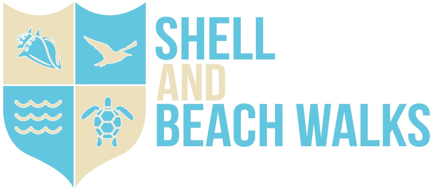 Shell and Beach Walks