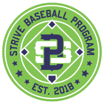 "Strive Baseball ""Precision at its Best"""