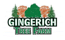Gingerich Tree Farm