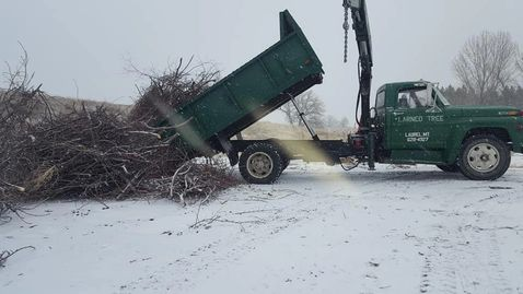 Larned Tree service in Billings, MT dumping a load of brush before we go to the next Tree Removal.