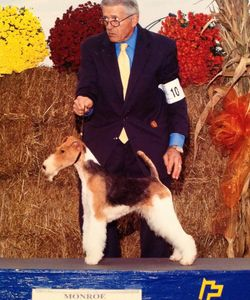 Legendary handler Michael Kemp will share stories about his life showing dogs.  March 2020.