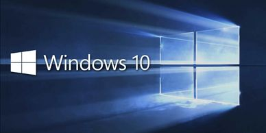 Windows 10, Windows 10 Pro, Linux, Linux mint, operating system included, include in new build, PRO