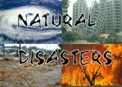 Natural Disaster Counseling