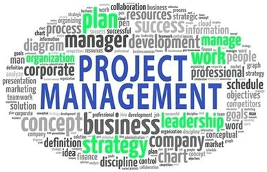 Project Management Consulting (Greenfield and Brownfield Development)