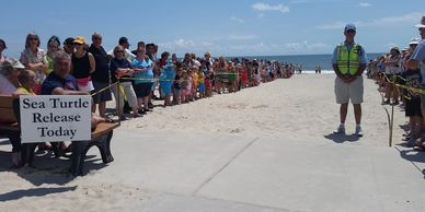 MAY 1 - Amelia Island Sea Turtle Watch  Monitoring begins.