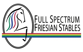 Full Spectrum Friesian Stables