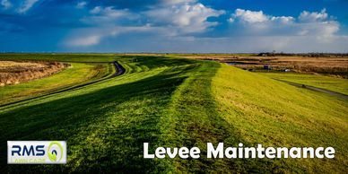 Our Commercial Services include LEVEE MAINTENANCE for businesses in St. Louis Metro
