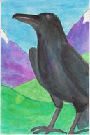 Rex the Raven from Outback the Cat Books