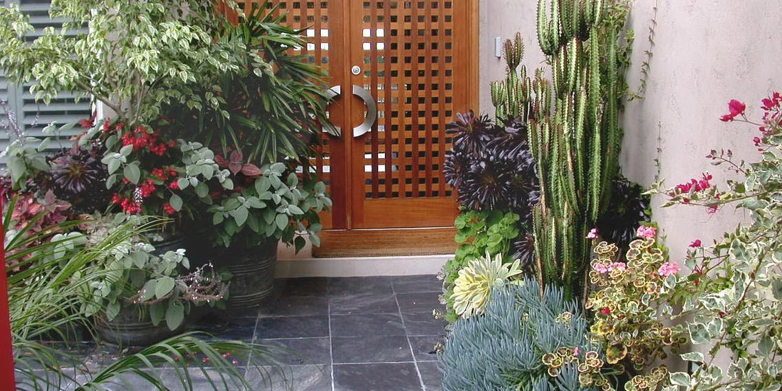 Large planter, pot, continaer, entryway, courtyard, San Diego, Koby's Garden Alchemy