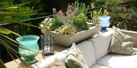 Shallow bowl planter, pot, contianer, succulent, low water, San Diego, Koby's Garden Alchemy
