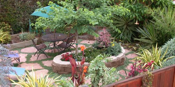 Lanscape Garden Design, Planters, Containers, Pots,  in San Diego, Koby's Garden Alchemy