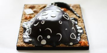 3D Custom Cake - Stingray