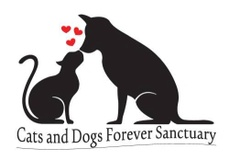 Cats and Dogs Forever Sanctuary