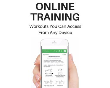 Online personal training with an online PT and online coaching. Workouts on a mobile device