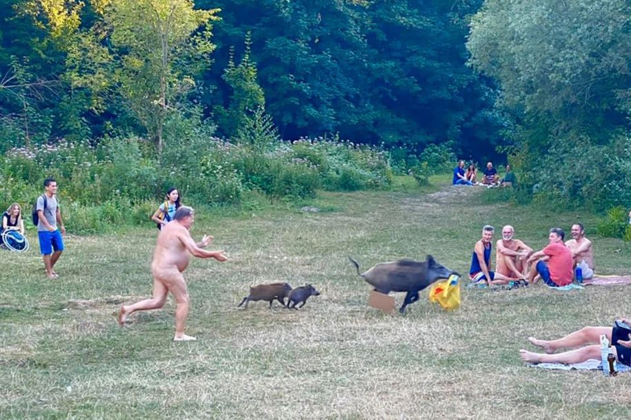 """Nature strikes back!"" Landauer wrote on Facebook, translated from German, alongside photos depicting the naked man running after the swine as smiling onlookers watched."