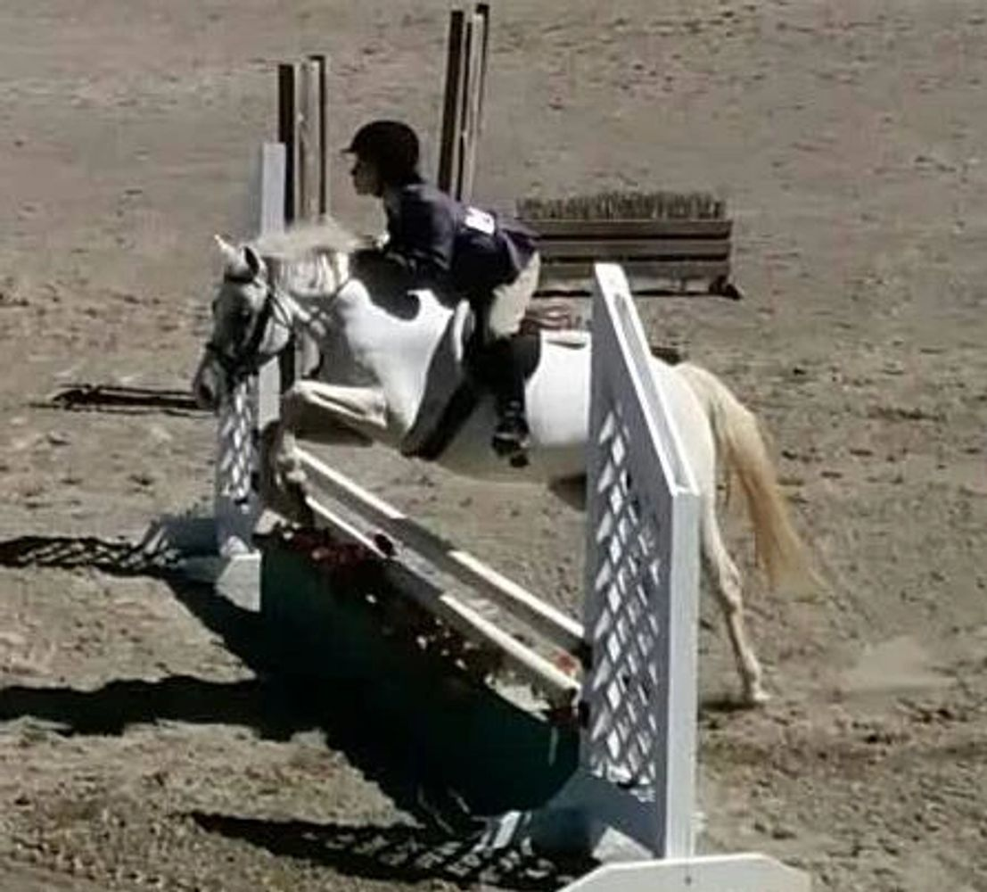 child riding a pony over a jump at a horse show