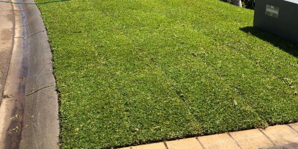 Sydney Turf installers offers a professional Turf installation service.