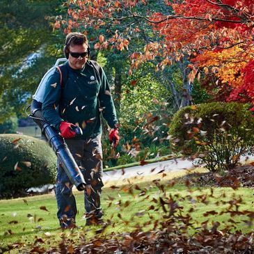 Lawn care leaf blowing