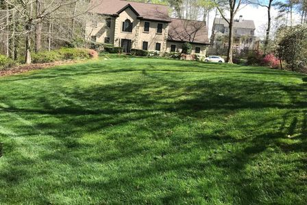 Lawns we fertilize and weed control