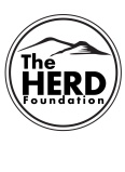 The HERD Foundation