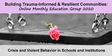 Crisis and Violent Behavior in Schools and Institutions