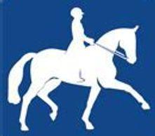 Horses International Equine Network