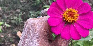 flower, pink hand, nature, dirt,petals, outside, outdoors, holistic