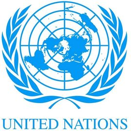 United Nations MRE meal ready to eat contractor bulk sales wholesale