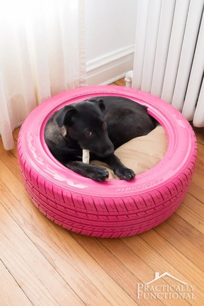 Picture of: 12 Unique Diy Dog Beds For Any Decor