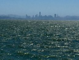 SF bay from east bay. You can see the city in the distance.