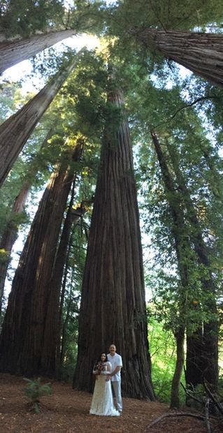 Jedediah Smith Redwoods State Park. Elope, wed or renew your vows. Go-anywhere wedding officiant.